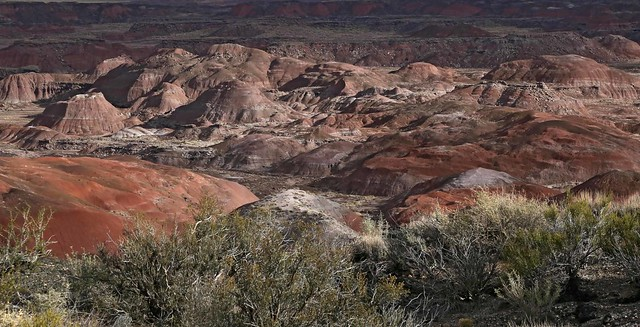 Painted Desert / Petrified Forest National Park