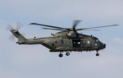 Merlin ZK001