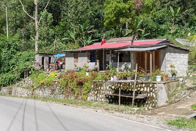 Timor-Leste-43