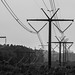 Powerline corridor at Mass Audubon Rocky Hill