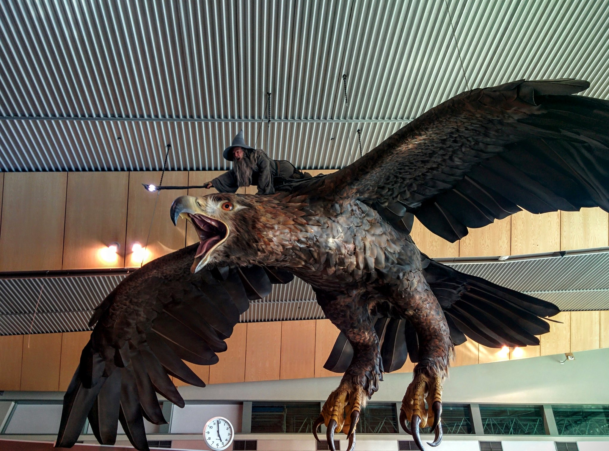 Gandalf riding an eagle in Wellington airport