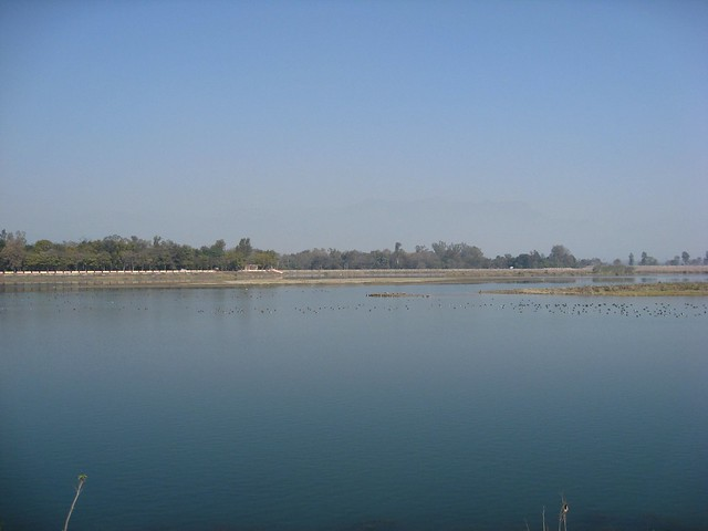 Asan Barrage Dehradun District, Canon DIGITAL IXUS 950 IS