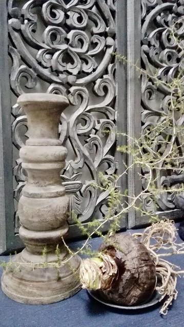 Kandelaar Amaryllis bol paneel