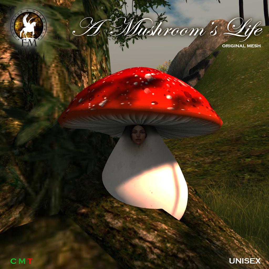F&M * A Mushroom's Life - MND9 Hunt Prize - TeleportHub.com Live!