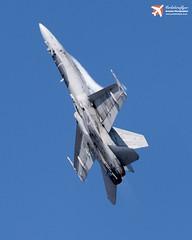 F18 Hornet - Riat