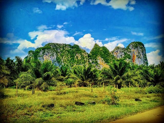 Jalan Gua Charas, 26090 Sungai Lembing, Pahang https://goo.gl/maps/cjxdYwebVRk  #travel #holiday #trip #traveling #旅行 #度� #亞洲 #Asian #Malaysia #馬來西亞  #여행 #ホリデー #휴� #праздник #путеше�твие #วันหยุด #�ารเดินทาง #산맥 #Gunung #山々 #山 #гора #ภูเขา #mountain #natu