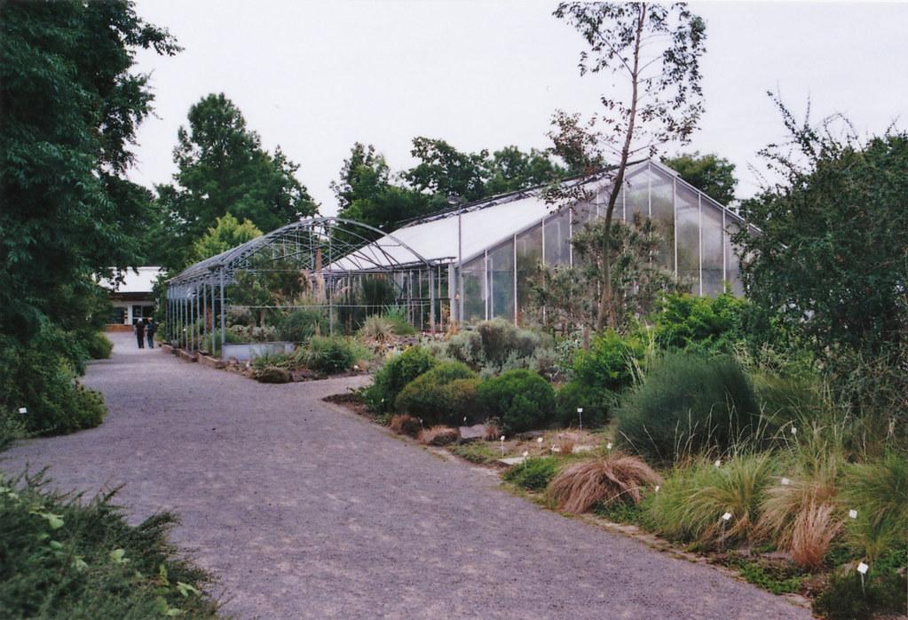 Dresden -- Botanischer Garten -- Gewächshaus