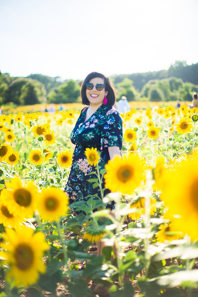 Sunflower Field-@headtotoechic-Head to Toe Chic