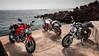 Ducati 797 Monster + 2019 - 17