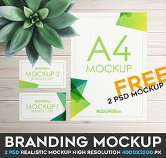Branding – 2 Free PSD Mockups