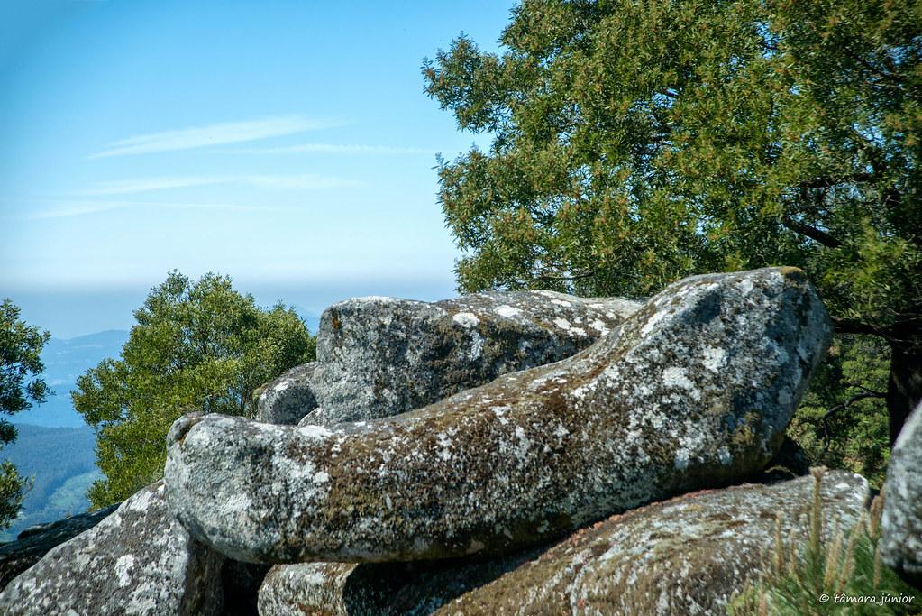 27.- Rota do Monte Aloia (226)