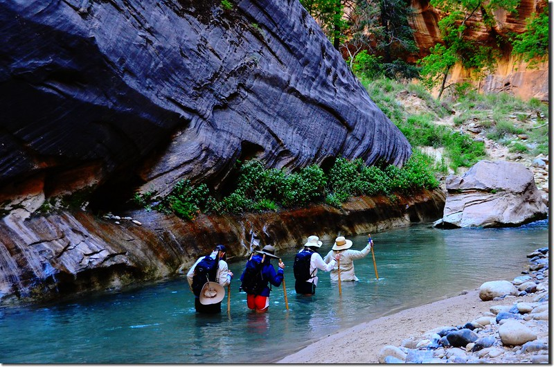 The Narrows, Zion National Park (18)