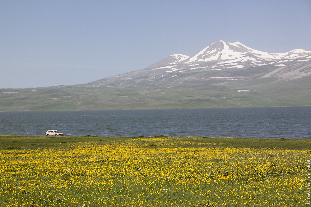 Грузия, вокруг озера Паравани // Georgia, around Paravani lake