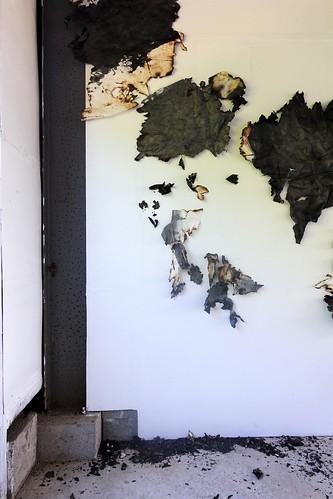 Karima Duchamp -- exhibition studio Kura -July 2018 - コピー