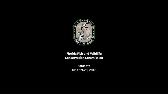 Sarasota Commission Meeting  June 2018