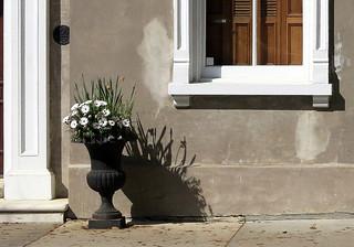 Urn planter, Meeting Street, Charleston, SC