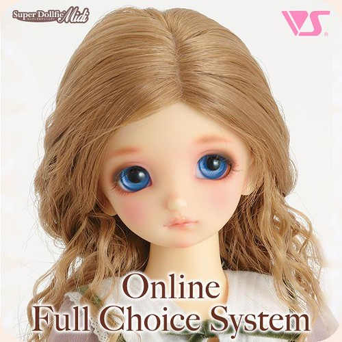 VOLKS USA FCS