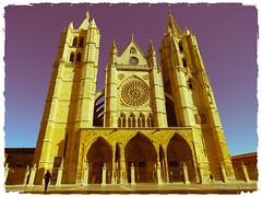 Catedral de León (11)