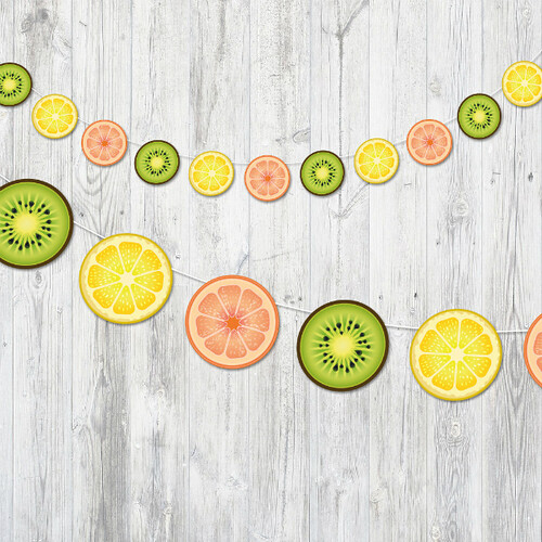 Lemon, Orange, and Lime Fruit Banner
