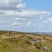 Lanshaw Lad, Ilkley Moor