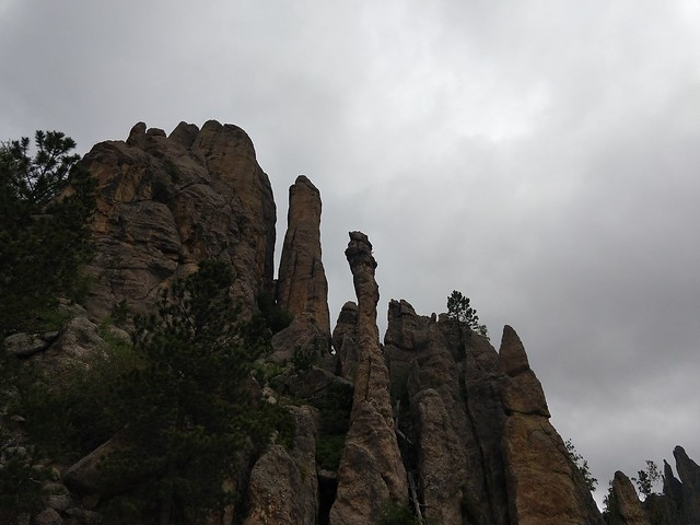 062518 Custer State Park (413)