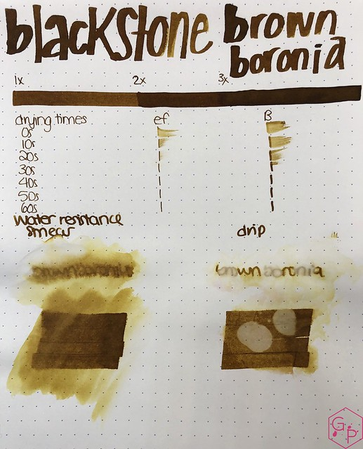 Blackstone Brown Boronia Ink Review @AppelboomLaren 6