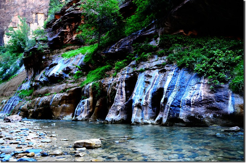 The Narrows, Zion National Park (13)