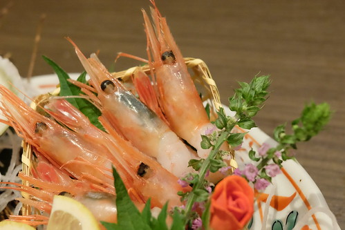 甘エビ 本日の鮮魚 五点盛り合わせ