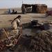 homework, little rann of kutch by nevil zaveri (thank you for 15+ million views:)