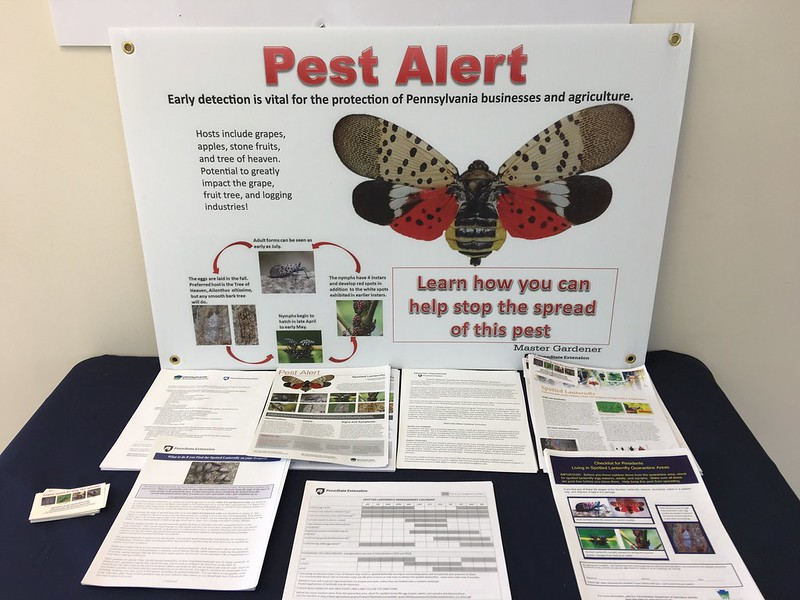 Pennsylvania pest alert