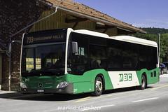 MBC Mercedes Citaro 217 in Le Pont