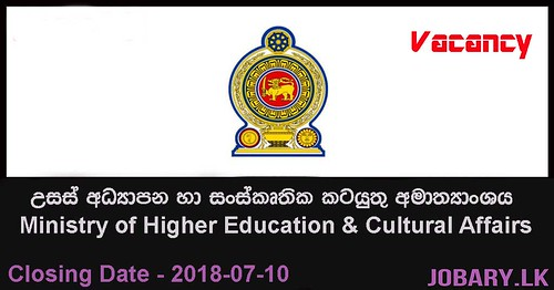Project Director, Senior Technical Officer – Ministry of Higher Education & Cultural Affairs