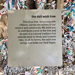 The Dali Wish Tree
