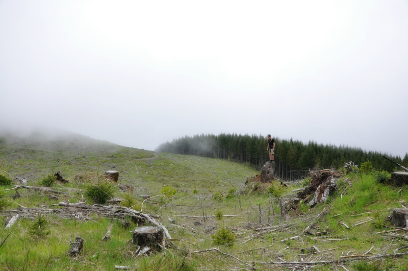 Horse Rock Ridge 9 @ Mt. Hope Chronicles