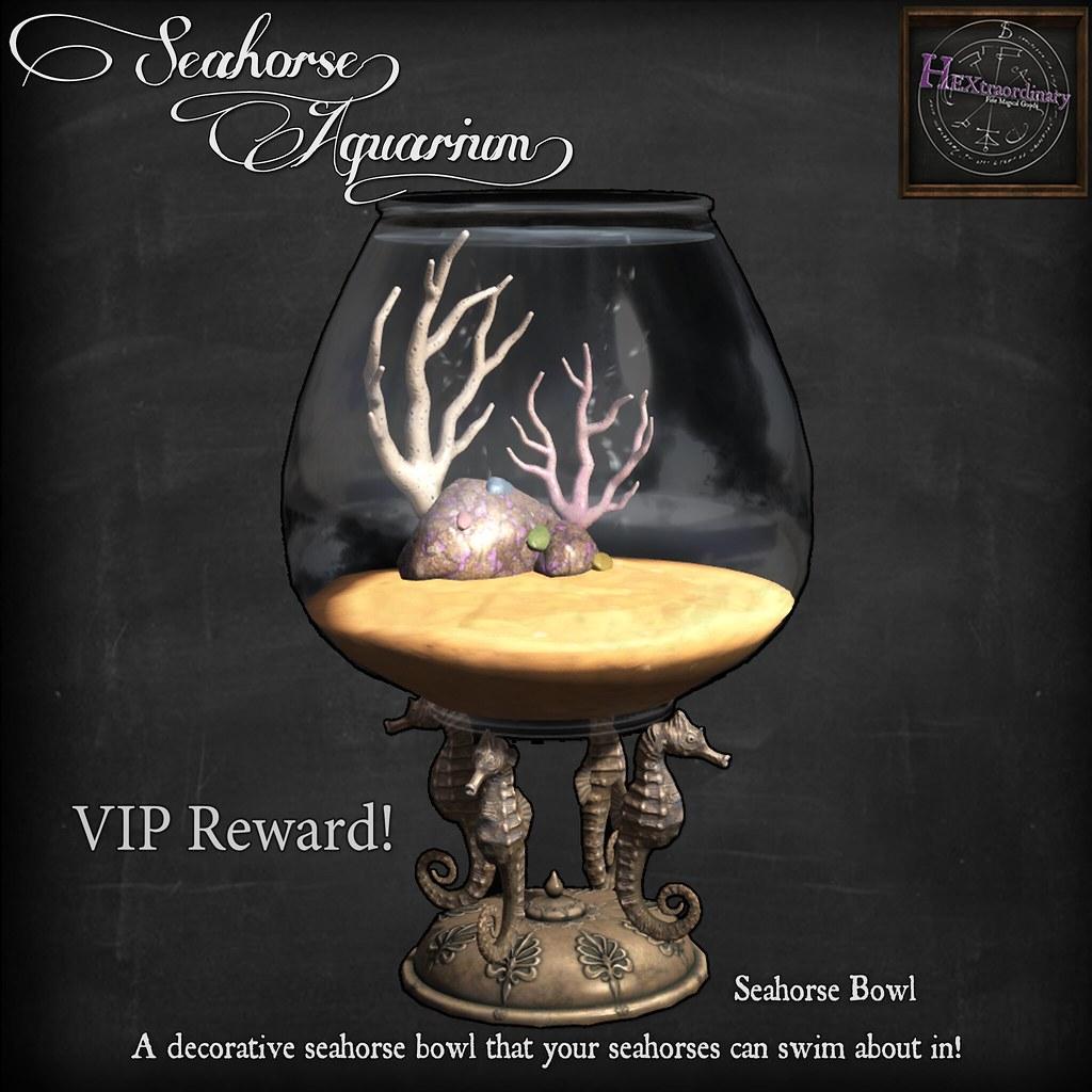 Seahorse Bowl Epiphany VIP Gift