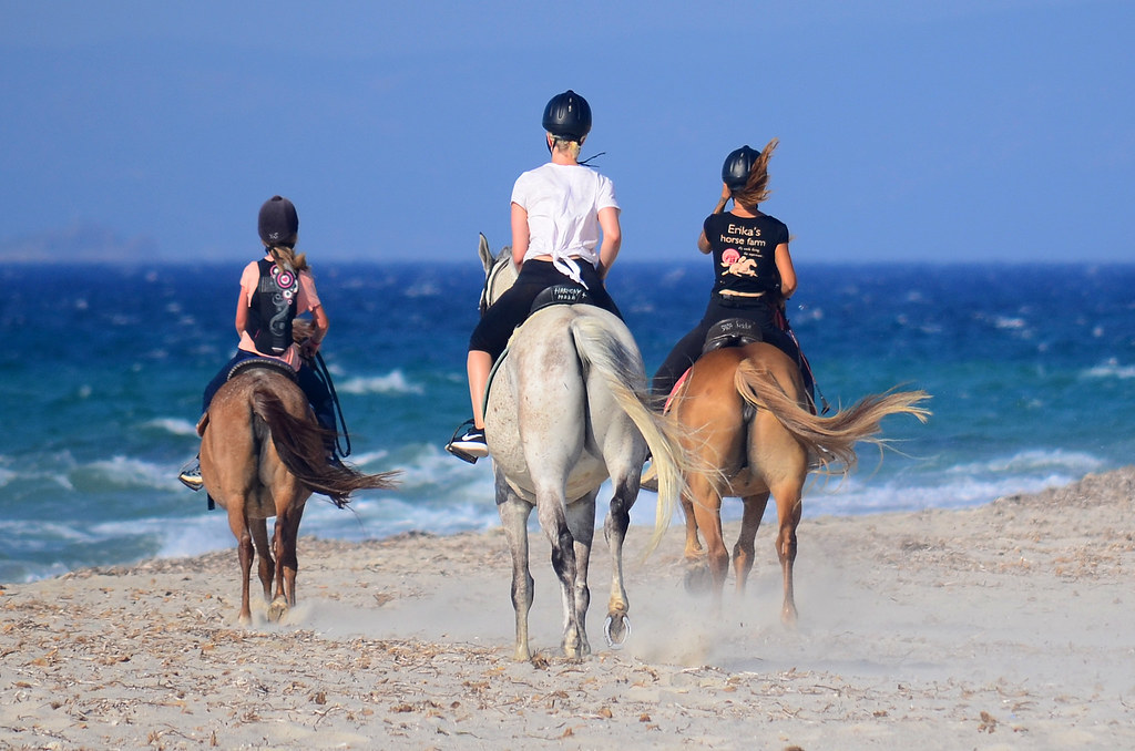 Three Horses on the beach