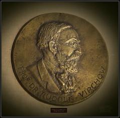 2016 S 2590 Riga5d MuzMedicine_204 Riga 6573 MuzMedRiga M. Zaurs. Prof. Dr. Rūdolfs Virhovs 1949. gods.. Bronza . Latvija. Rudolf Ludwig Carl Virchow