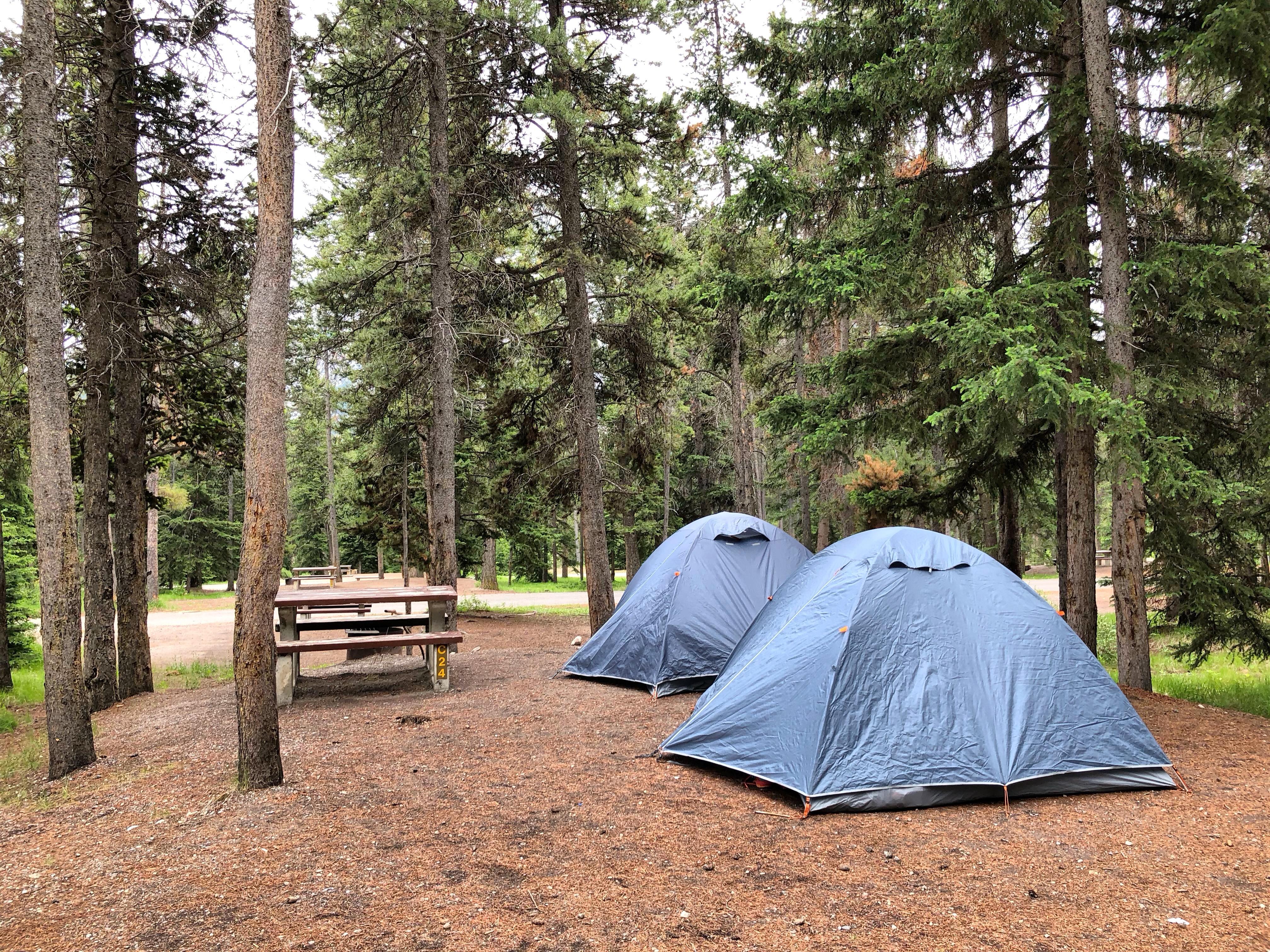 Canada Rockies TrekAmerica Itrekhere 2018 7