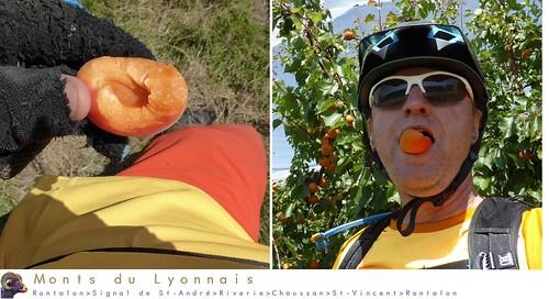 Monts du Lyonnais - Tutti frutti (juin 2018)