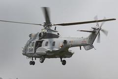 AS-332 HD21-11