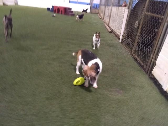 06_18_18 Football Play :-)