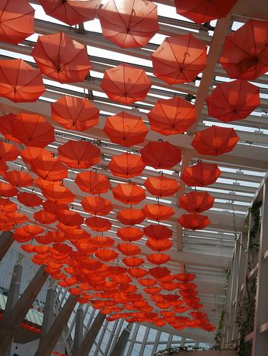 Orange umbrellas in Tianjin Museum of Nature