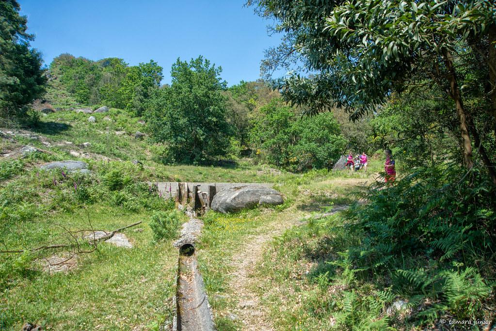 67.- Rota do Monte Aloia (605)