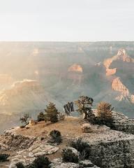 ?Grand Canyon National Park, Arizona, USA |  Renee Roaming