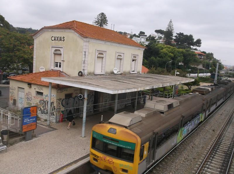 DSCF1390