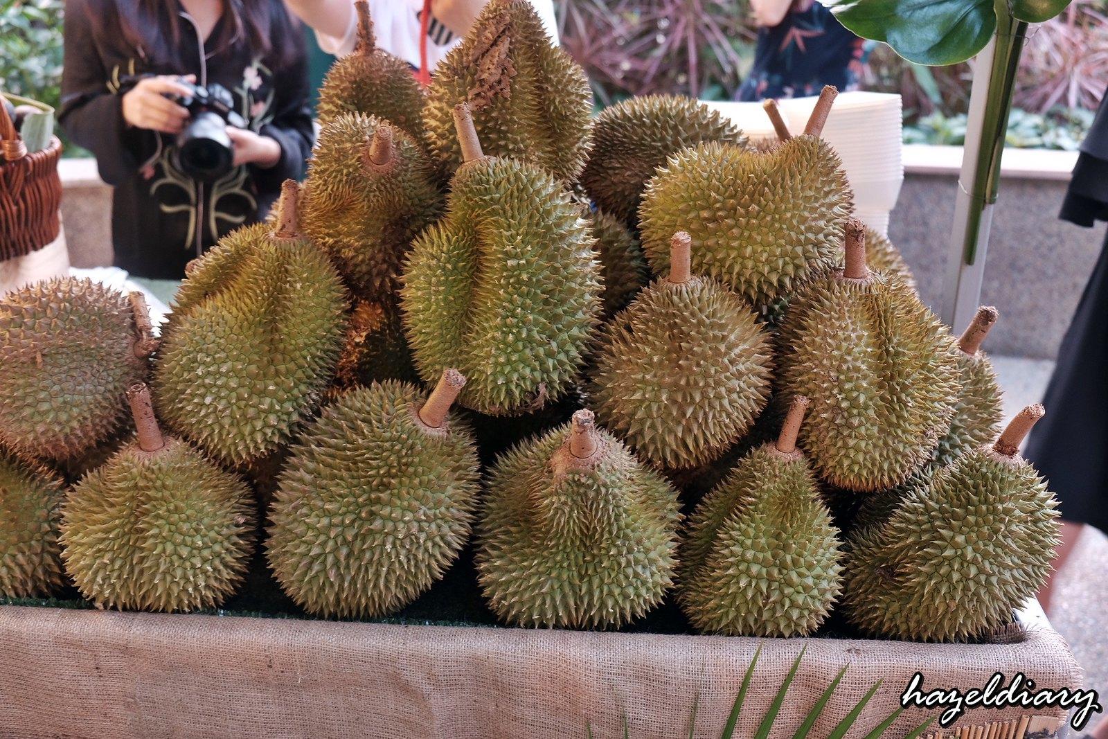 The Line Shangri-La Hotel-Durian buffet-Durian -1