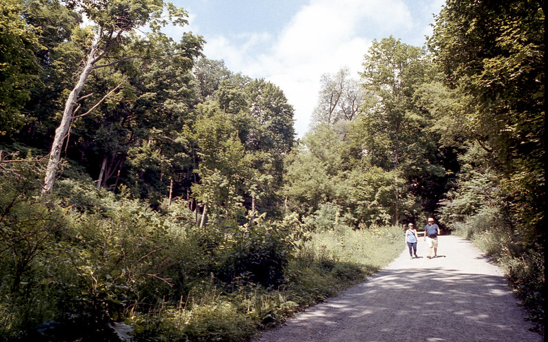 Walking Along the Beltline Trail