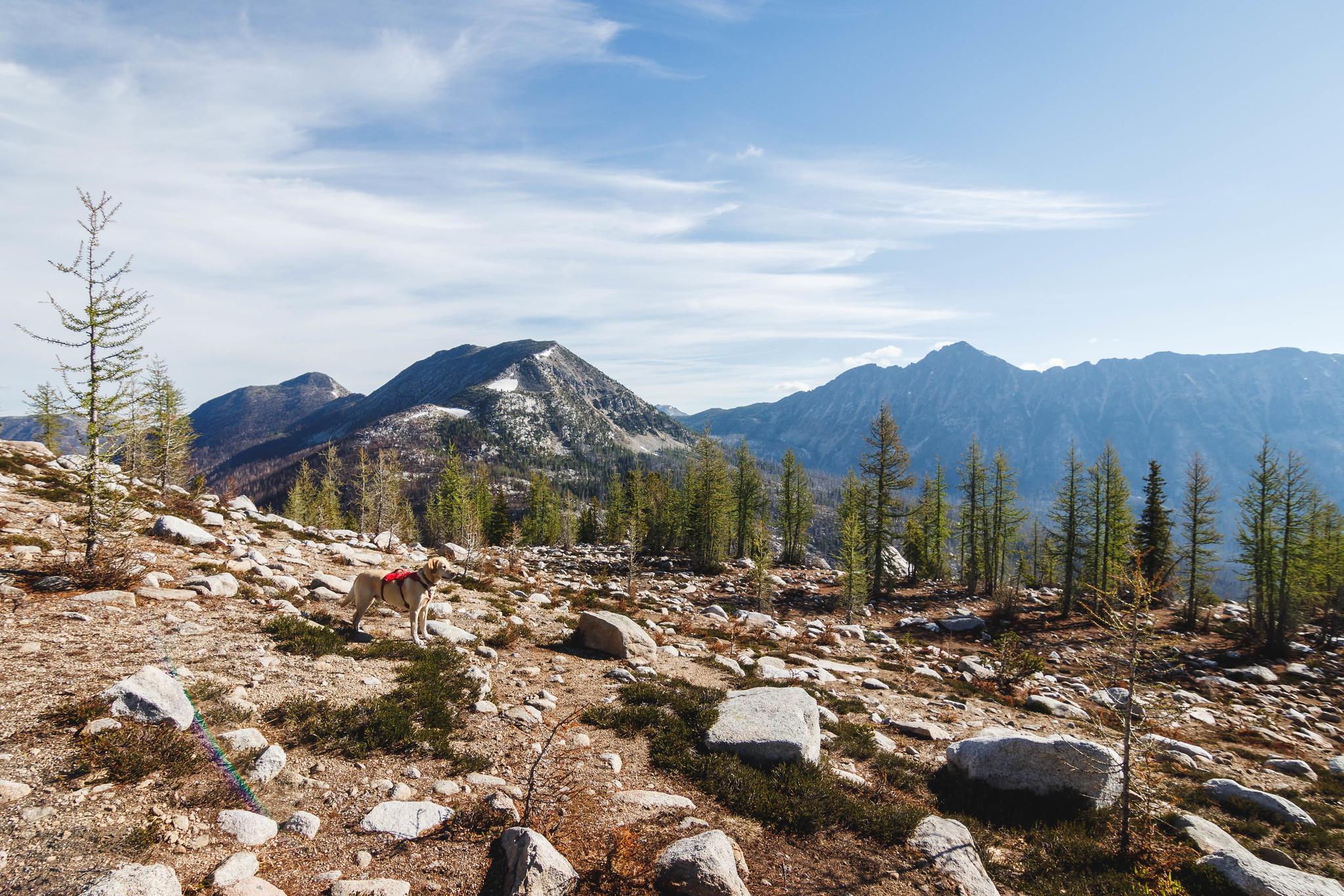Looking back at Andrew Peak and Amos Peak