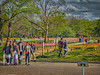 Photo:チューリップの花園へ By jun560