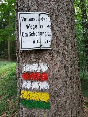 Wanderung bei Altlengbach